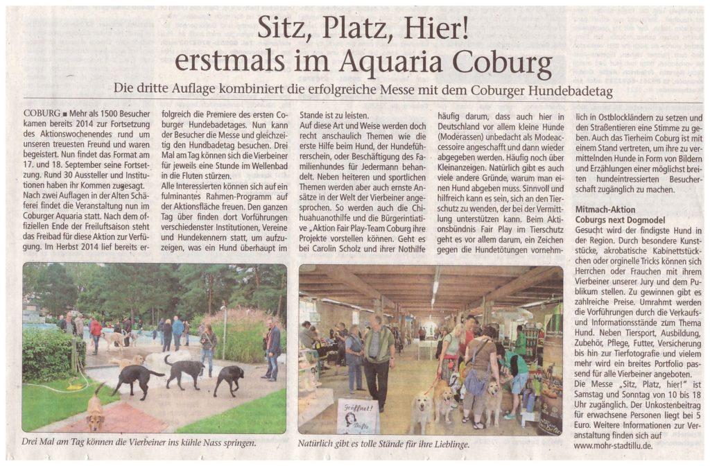 sitz-platz-hier-09-2016